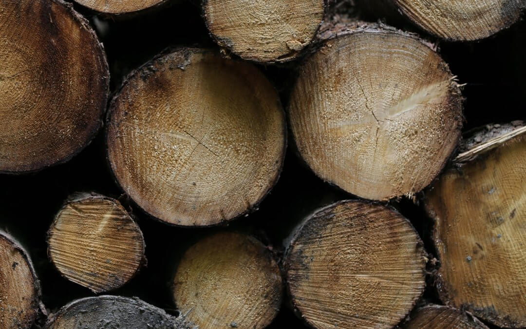 Why Shop at a Lumber Yard Rather Than a Big Box Store?